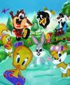 Desenhos Baby Looney Tunes