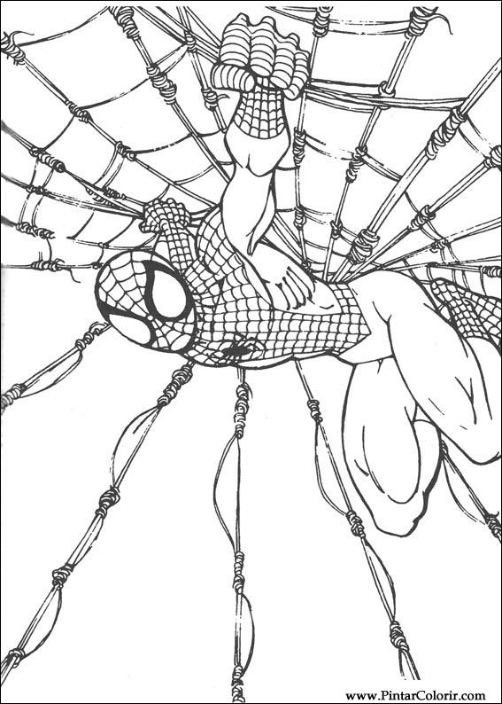 Drawings To Paint amp Colour Spiderman Print Design 060